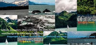 USA AK Seward; Obst Photos Nikon D300s Obst Adventure Travel Alaska Image DSC_7738-7635-8770-8912A-8773-7796--8912B-8774-7765-COLLAGE