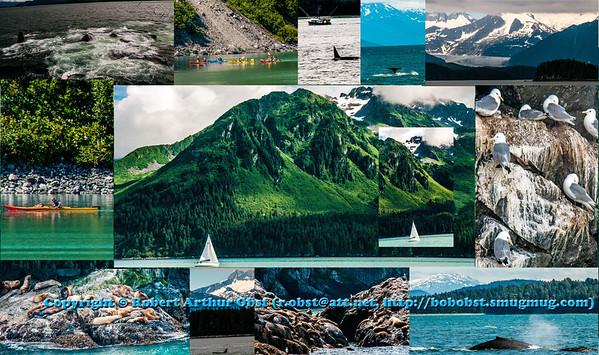 Obst FAV Photos Nikon D300s Adventure Travel Alaska Image DSC_7804-8911-7700-7650-7756-8912-8774M-8773-8792-8860-7728-8820-7630-COLLAGE