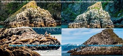 Obst Photos Nikon D300s Obst Adventure Travel Alaska Image 8809