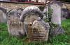 WE 1484  Old Jewish Cemetery  EISENSTADT, Austria  2006