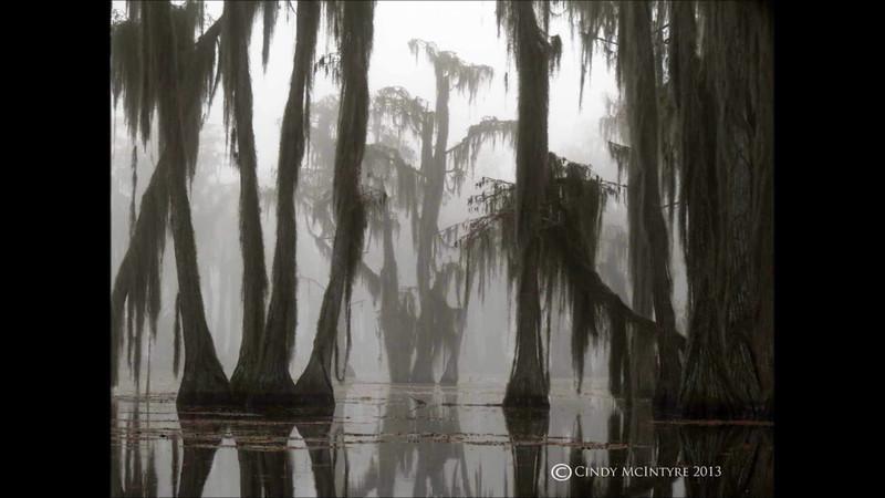 Spirit of the Cypress - Banks Lake 2013