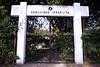 """SV 4  Cementerio Israelita """"Masferrer"""", Old Cemetery  SAN SALVADOR, EL SALVADOR"""
