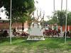 SV-D 17  Plaza Israel  SAN SALVADOR, EL SALVADOR