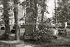 LV 195  Jewish cemetery, VALKA, LATVIA