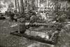 LV 182  Jewish cemetery, VALKA, LATVIA