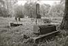 LT 492  Old Jewish Cemetery  KAUNAS, LITHUANIA