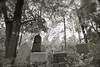 LT 630  Old Jewish Cemetery  KAUNAS, LITHUANIA