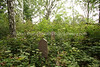 LT 646  Old Jewish Cemetery  KAUNAS, LITHUANIA