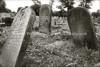 PL 200  Cemetery  BIALYSTOK, POLAND