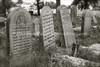 PL 259  Cemetery  BIALYSTOK, POLAND
