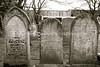 NZ 2052  Symonds Street Cemetery  AUCKLAND