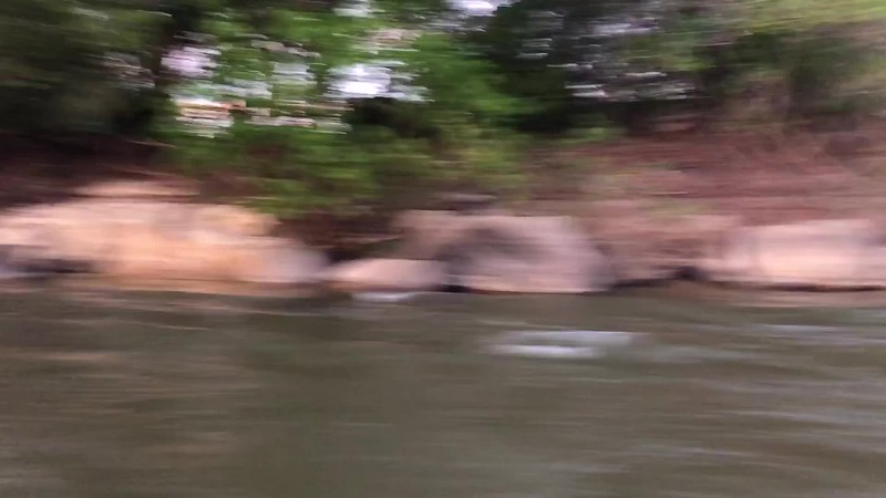 A fun run in the boats up the Rio Roosevelt to the morning's birding destination, by participant Jonathan Newman