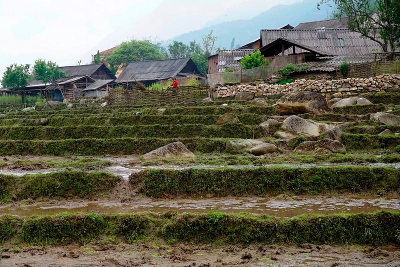 SAPA - Lao Chai Village