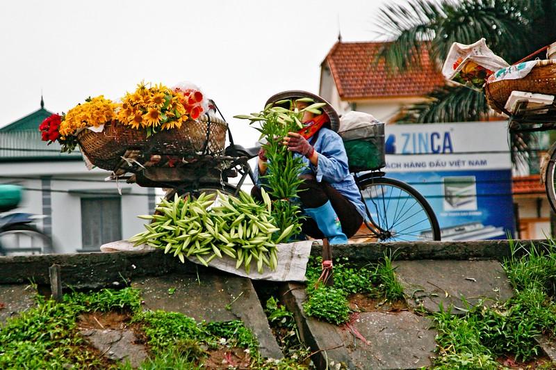 HANOI, Early morning Flower Market