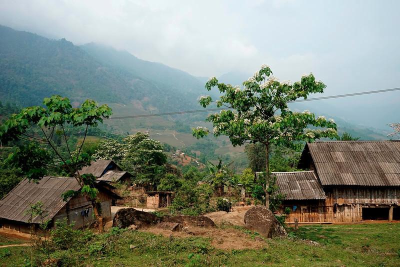 SAPA - Ban Ho Village
