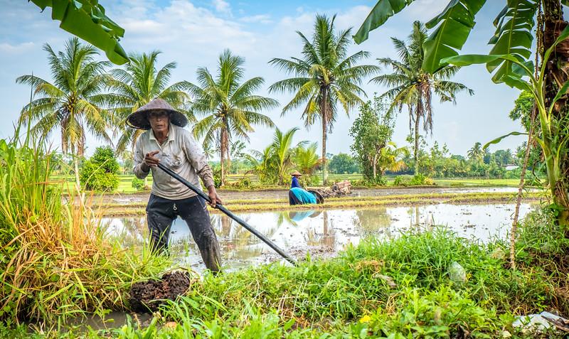 BalineseRiceFarmer5-5371.jpg