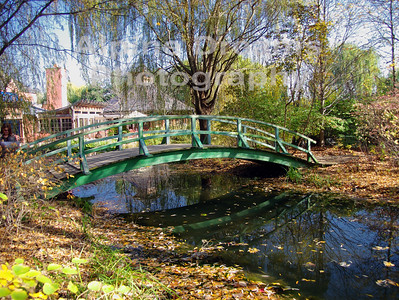 BRIDGE-by-the-POND