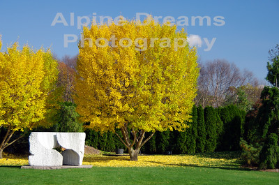 GRANITE-and-MAPLES-2
