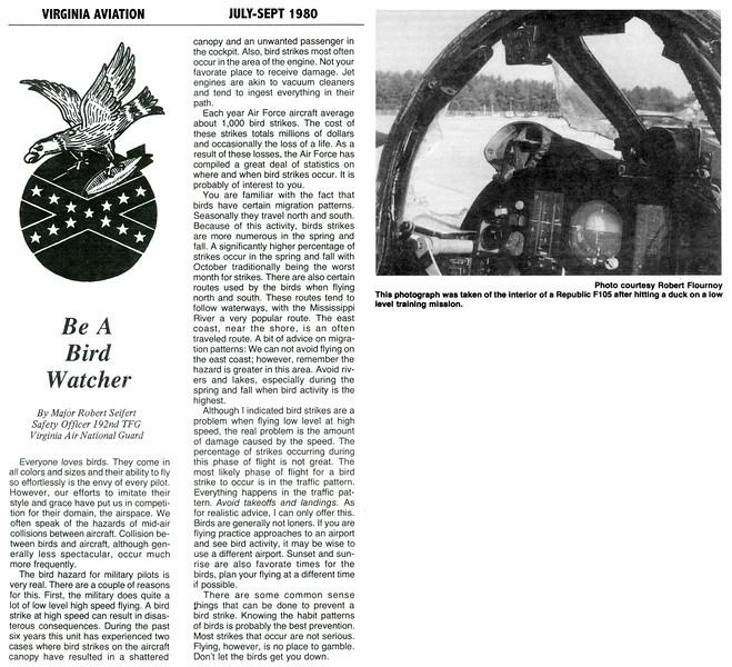 VA-ANG BIRD STRIKE collage 001ABC copy.jpg