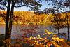 VA BRP GWNF SHERANDO LAKE OCTJE_MG_8069S2w