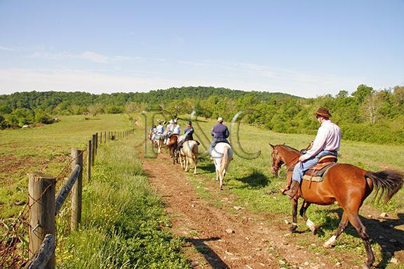FAUQUIER COUNTY, VIRGINIA<br /> MARRIOTT RANCH TRAIL RIDE
