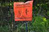VA SNP APP TRAIL HAWKS BILL SEPTJI_MG_6293MMW