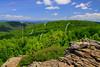 VA SNP APP TRAIL Frazier Discovery Trail ON LOFT MOUNTAIN MAYAD_MG_1306MMW