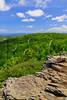 VA SNP APP TRAIL Frazier Discovery Trail ON LOFT MOUNTAIN MAYAD_MG_1300MMW