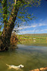 VA BENTONVILLE SHENANDOAH RIVER AFTER FLOOD APRAA_MG_3521bMMW