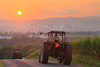 Tractors at Sunset near Dayton in the Shenandoah Valley of Virginia, USA