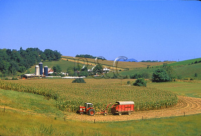 VIRGINIA - SHENANDOAH VALLEY - FARMS