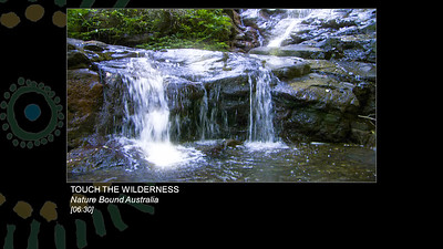 Touch The Wilderness