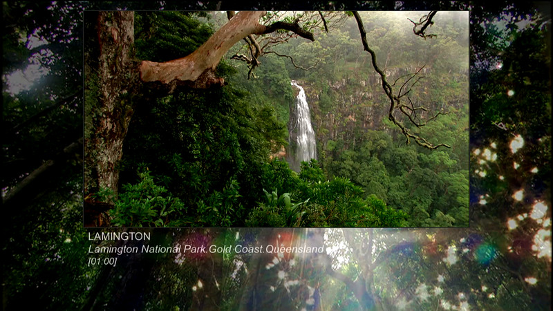 When high-definition video first arrived in Australia in 2001, the diversity of light & shade in the world-famous Lamington National Park on Australia's Gold Coast was chosen to test its acclaimed picture-capturing qualities. HD passed the test.