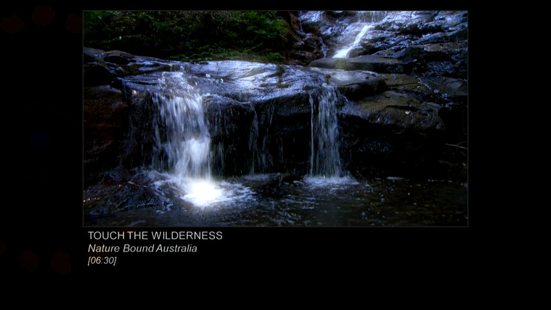 TOUCH THE WILDERNESS [Trailer]