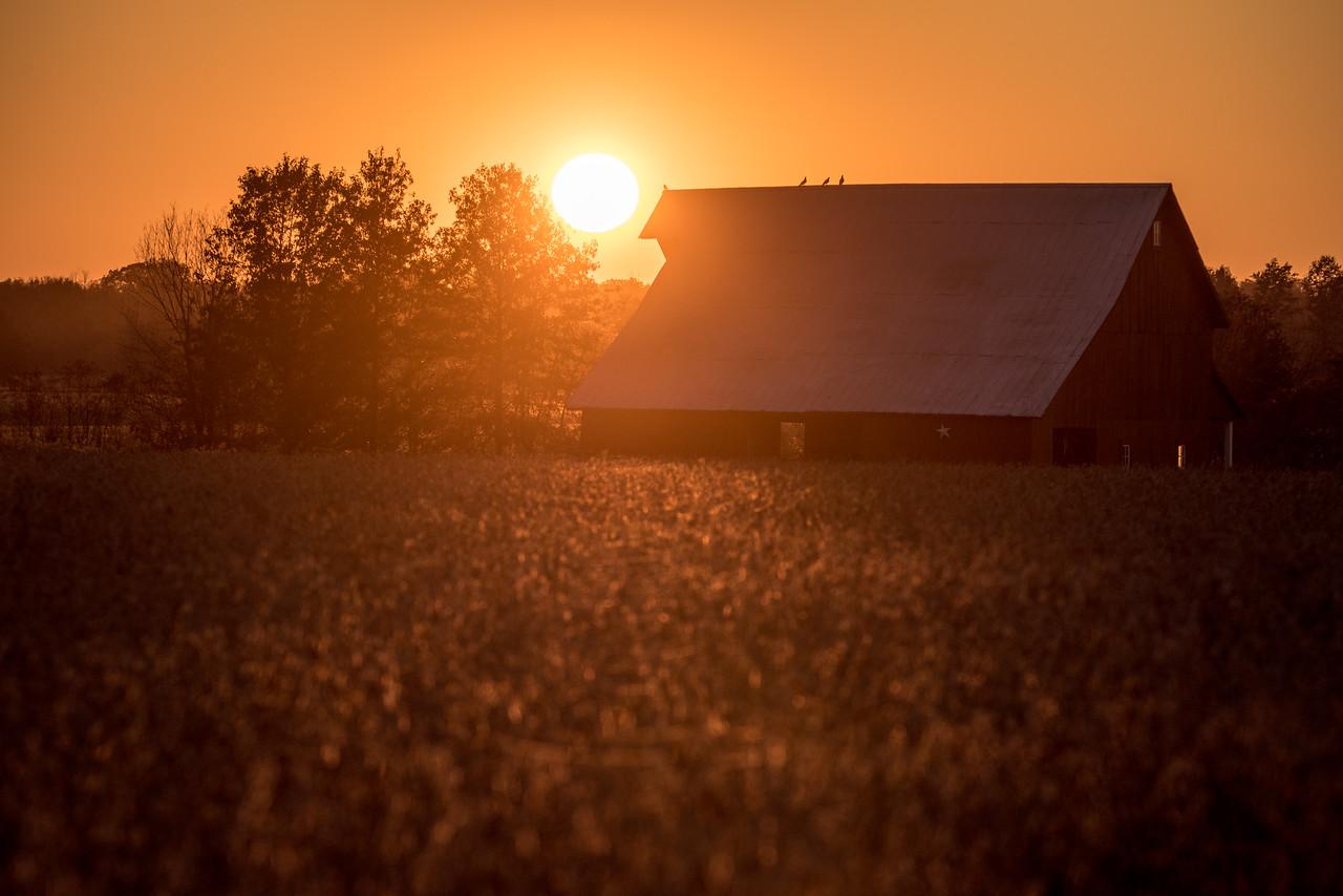 Barn at Sunset in Clay County Novemeber 2017