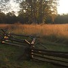 Bull Run Meadow with Split Rail Fence by Brigitte Hartke