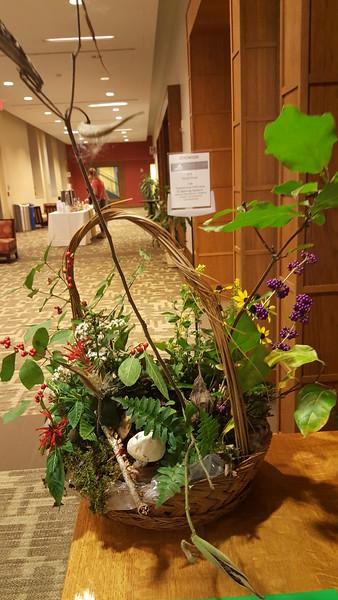 Native Plant Arrangement