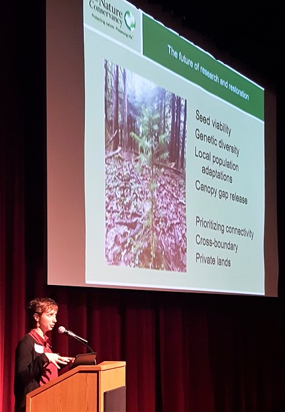Katy Barlow: Partnerships and Projections for Picea rubens: Restoration and Recovery in Central Appalachia