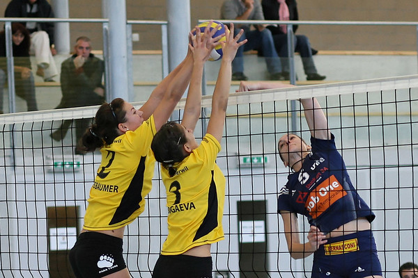 Sport Volleyball Frauen NLB VB Therwil 1 Saison 2007/2008