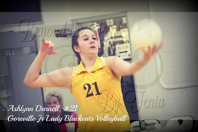 2012-2013 Goreville Jr Lady Blackcats Volleyball
