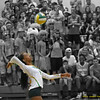 Volleyball_Dogpound