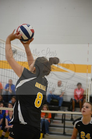 Goreville Lady Blackcats Volleyball Play Christopher Bearcats