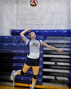 Volleyball2015-108 copy