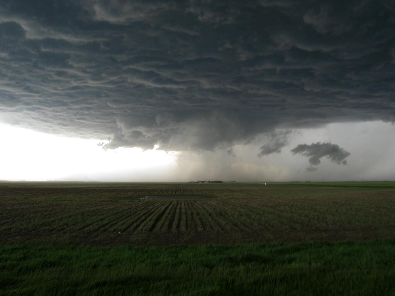 Tornadogenesis Failure