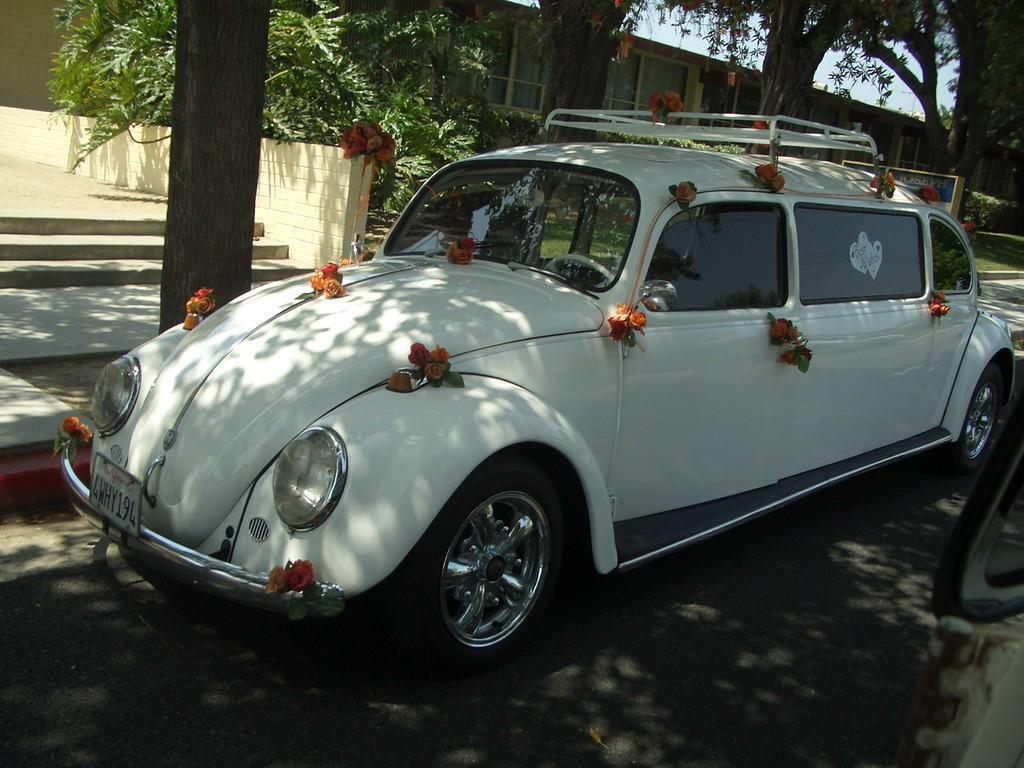 dhk wedding cruise