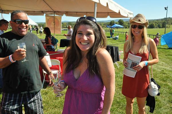 2012 Virginia Wine Festival - Great Meadow