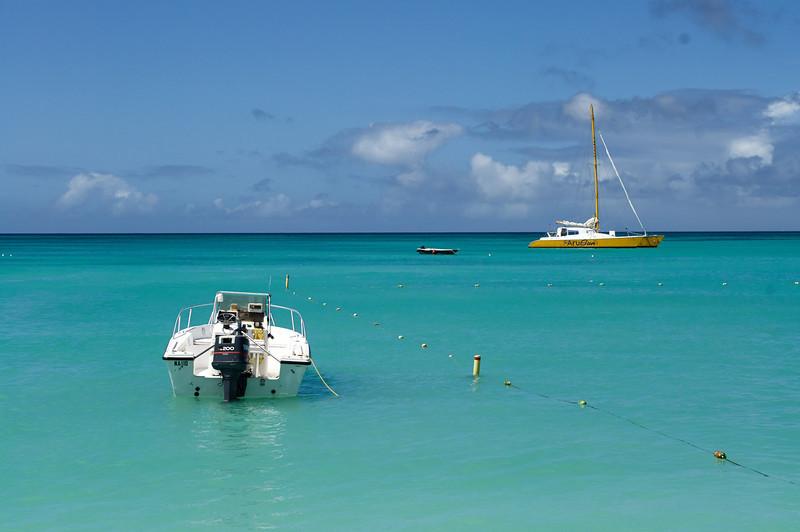 NATURE/PAYSAGE plage Aruba NORM8225-L