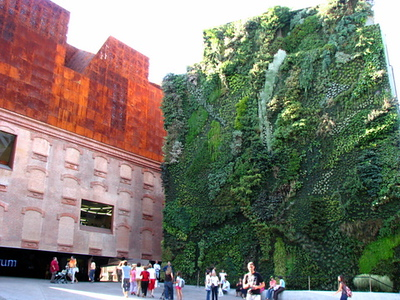 Building with Plants on it