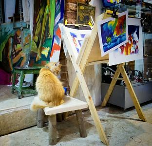 The cat art critic