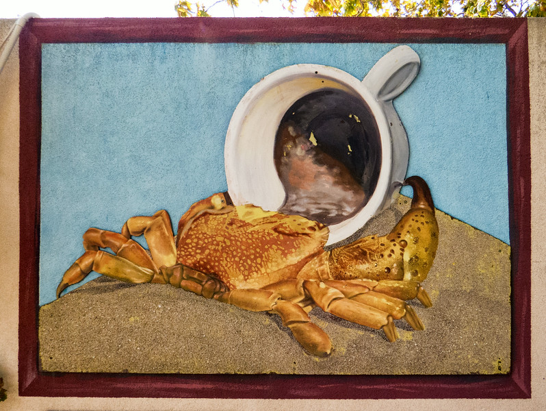 Coffee shop on the beach - a crab getting his caffeine fix